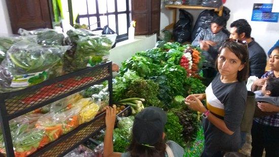 Tianguis Agroecologico y Artesanal