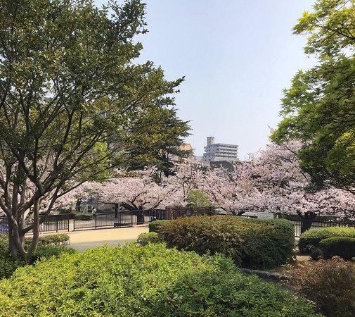 Kogashiramachi Park