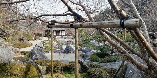 奥院の浄土庭園です