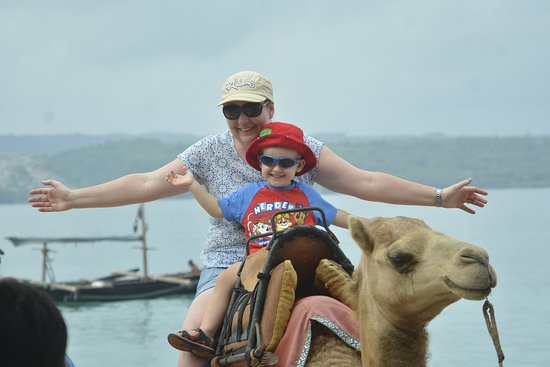 Bali Camel Adventure