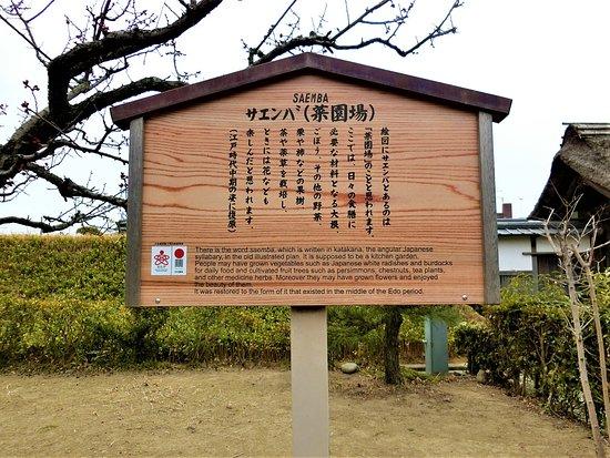菜園場(さえんば)説明板