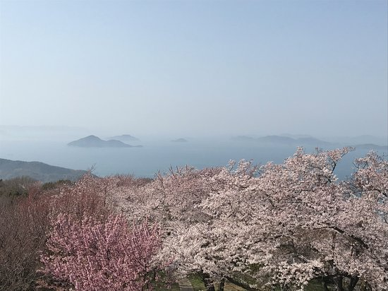 Mt. Shiude: 山頂からの眺め