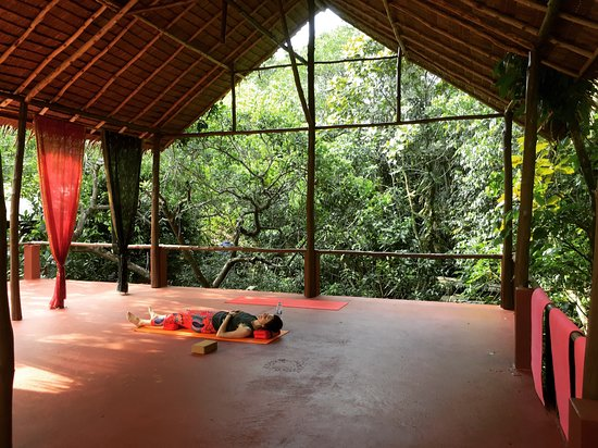 PAUSE - Surf & Yoga House