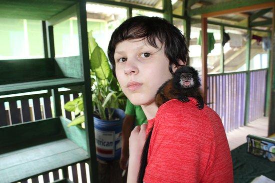 Monkey Island: Amazing!