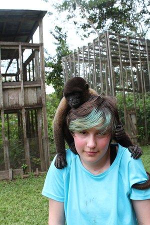 Monkey Island: Beautiful!
