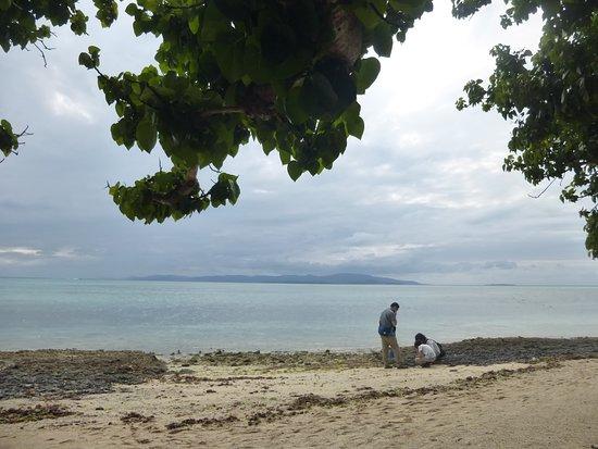 対岸は小浜島