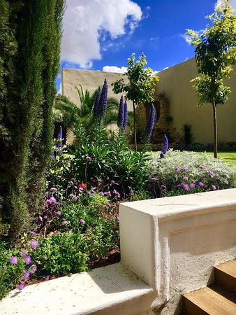Perfect oasis for calm service and peaceful luxury