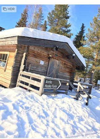 Arctic Husky Farm