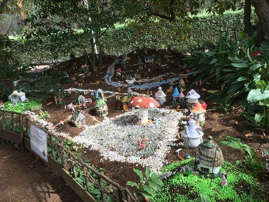 Fairy Garden Picture Of Tesselaar Silvan Tripadvisor