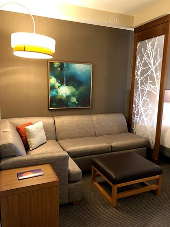 Hyatt Place Tampa/Wesley Chapel: Sitting area/sofa bed