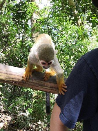 Sosua, Dominican Republic: 😍😍💕💕