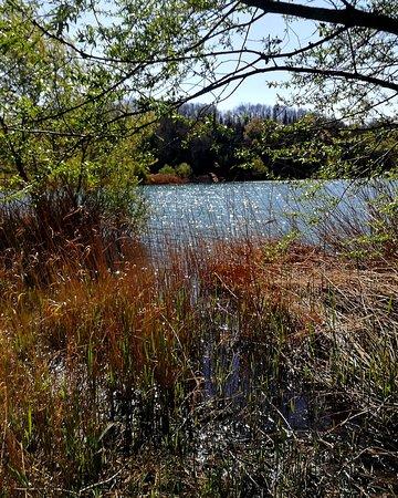 Il piccolo, nascosto e poco conosciuto lago di Giulianello, a sud di Roma. Trionfo di pace e bellezza.