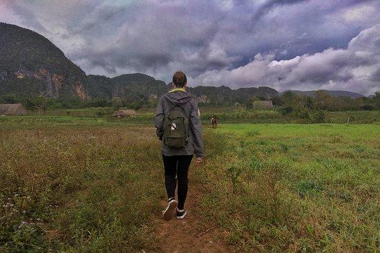 Vinales, Cuba: Porque andar por los senderos de Viñales es espectacular, su flora, su fauna, sus campesinos labrando la tierra, su magia.