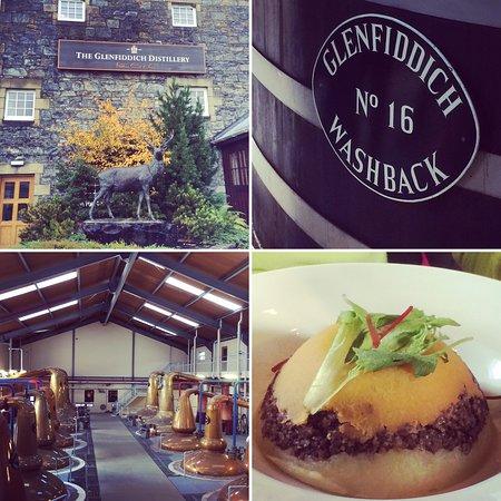 Rosegrove Guest House: Glenfiddich Distillery