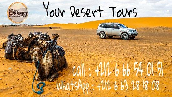 Your Desert Tours: Your Dream Tour