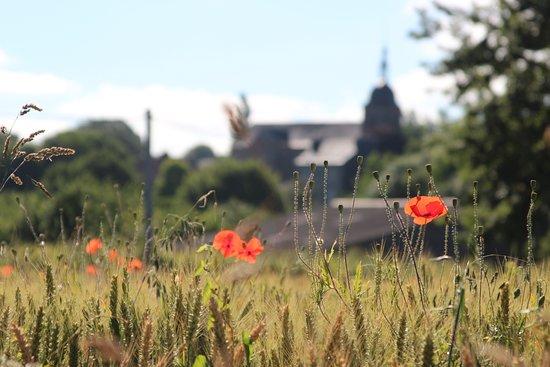 Saint-Quentin-les-Chardonnets, Франция: Nearby village and fields.