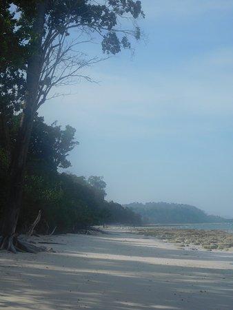 Attenti alla bassa marea