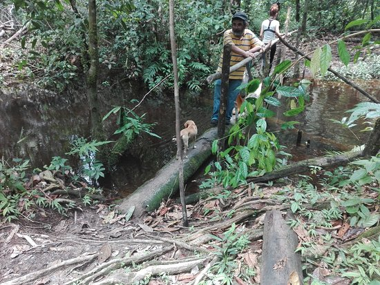 Leticia, Colombia: Excursión Selva Amazónica Colombiana
