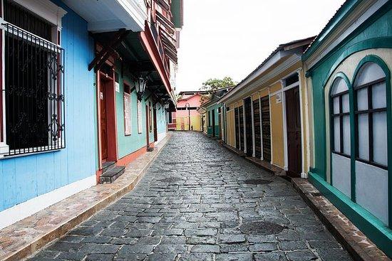 Visita privada: Guayaquil con Parque...