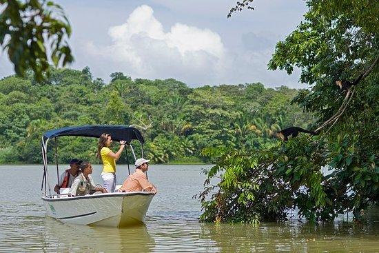 Expedição no Lago Gatun