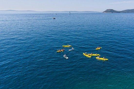 Excursion de 3heures en kayak autour...