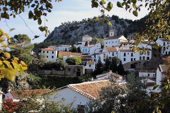 Privé dagtocht vanuit Málaga: De ...
