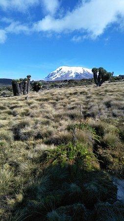 Mount Kilimanjaro: I love what Am doing