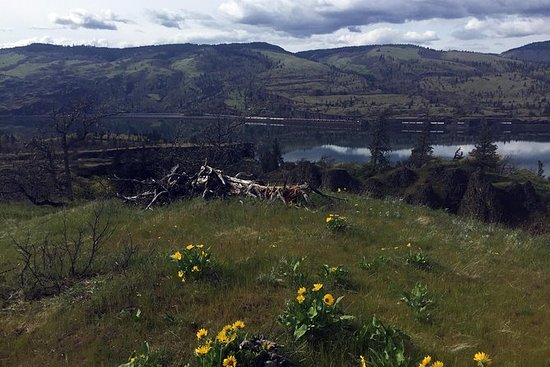 Columbia Gorge Hike, Wine, & Discover