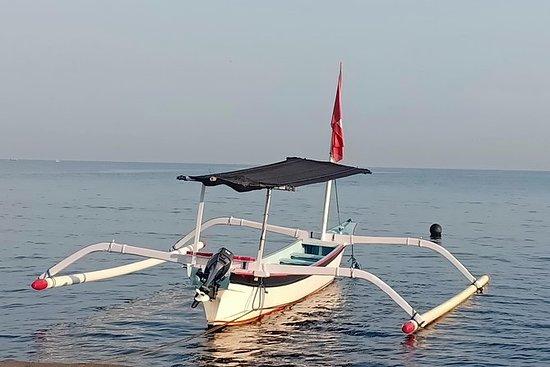 Rencontre avec les dauphins de Lovina...