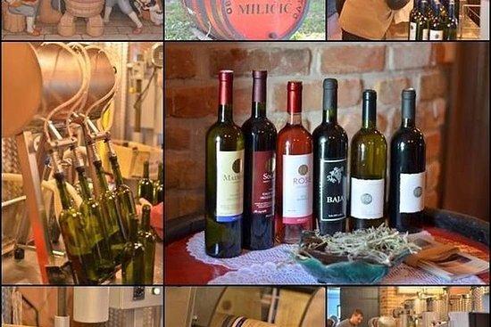 Vinsmaking Konavle