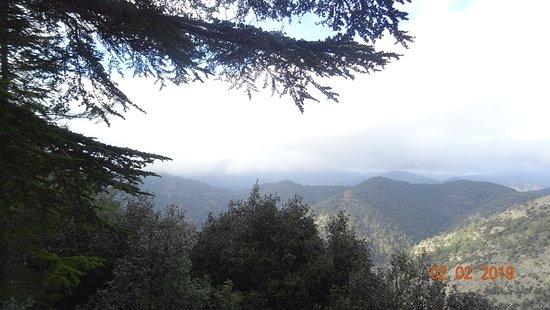 Кипр. Горы Троодос, февраль 2019 года