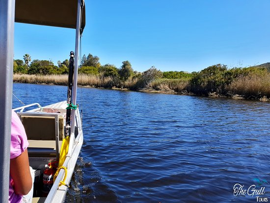 Garden Route, South Africa: Take a tranquil cruise and see the birdlife along the lagoons.