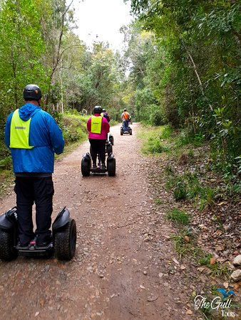 Garden Route, South Africa: Head on a Segway through the natural forests