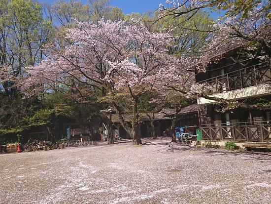 Kawasakishi Kurokawa Seishonen Yagaikatsudo Center