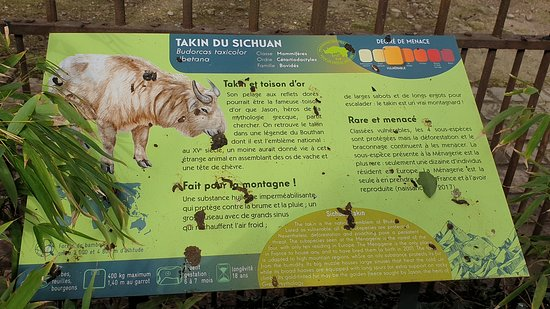 Ménagerie, le zoo du Jardin des Plantes: Panneau d'information.