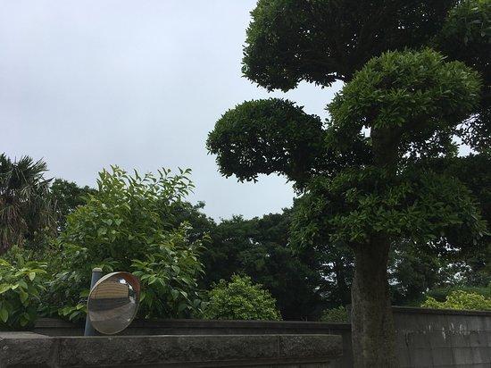 Tsumiya Kofungun