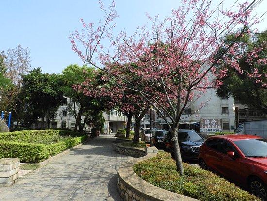 Zhongli, Taoyuan: 中壢莒光公園
