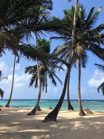 San Blas Dreams: Aroma Island