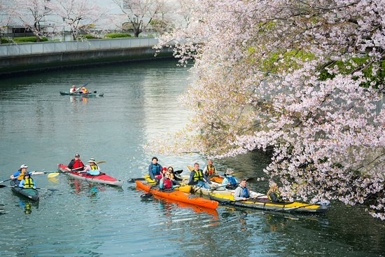 Tokyo Great Kayaking Tour (Chuo) - 2020 All You Need to Know ...