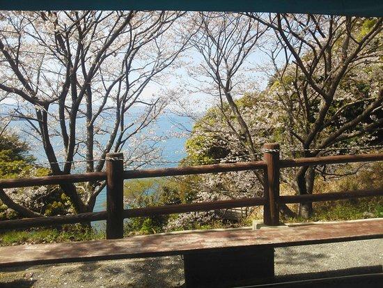 Omura Bay: 大村湾