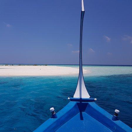 Royal Island Resort & Spa: escursione consigliata: sand bank