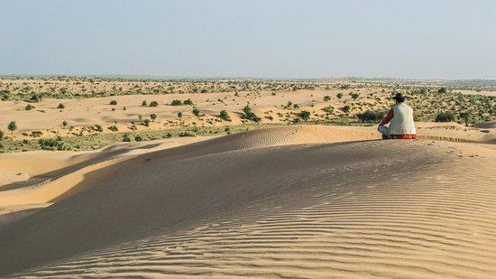 Amazing Desert Camp
