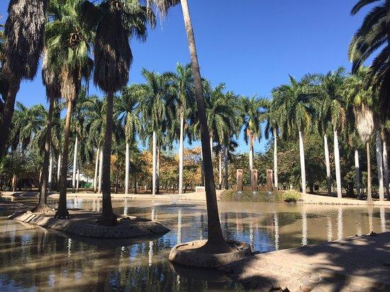 Jardin Botanico Benjamin Francis Johnston