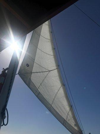 Blue Melody & Black Pearl Sailing (Palm - Eagle Beach