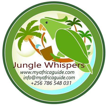 Jungle Whispers