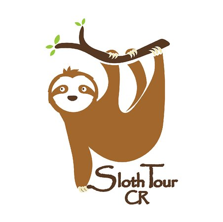 Sloth Tour at Manuel Antonio Park