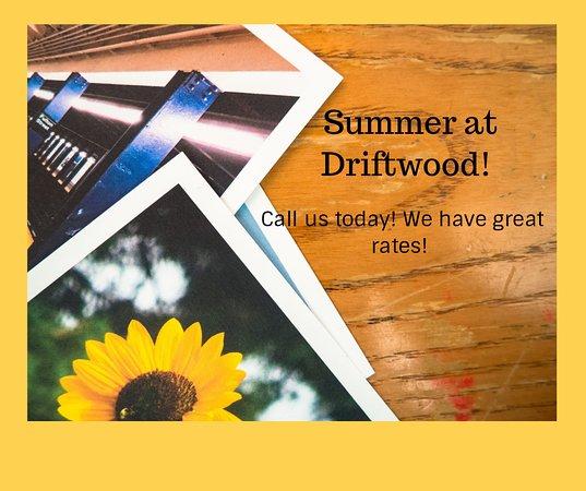 Driftwood Motel  18281 Coastal Hwy Lewes, Delaware (302) 645-7500 🌞🌼🌻🌺🥀🌹 — at Driftwood Efficiency Motel.