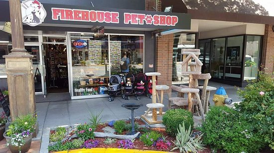 ‪Firehouse Pet Shop‬