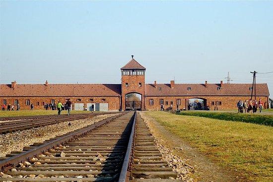 Tour del Museo di Auschwitz-Birkenau