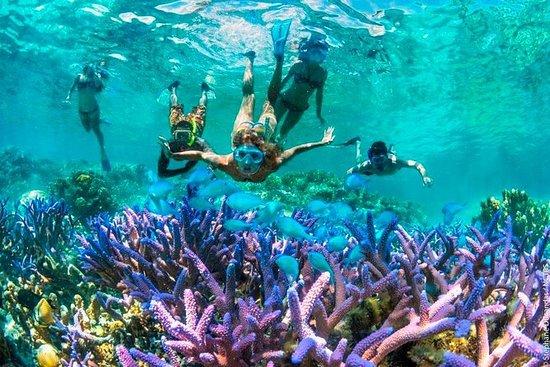 Bloo Lagoon Snorkling Øst Bali med...